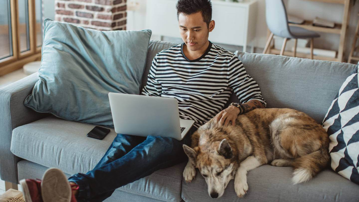 Man on couch looking at computer with his dog